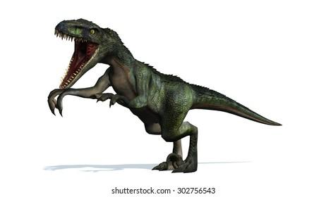 velociraptor dinosaur attack - isolated on white background
