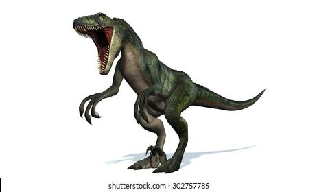 velociraptor dinosaur roars - isolated on white background