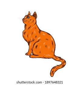 Very interested ginger cat. The images are drawn in their own style, ideal for printing on various products and for posting on the Internet.