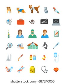 Vet clinic services icons. Pet treatment flat symbols. Domestic animals health care concepts. Bandaged dog, sick cat, ill puppy, kitten, parrot and rabbit. Veterinarian doctor, surgeon, nurse