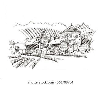Vineyard village farm view, black and white hand drawn sketch
