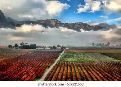 Vineyards in autumn colors of orange, red an yellow in the Hex River Valley of South Africa.