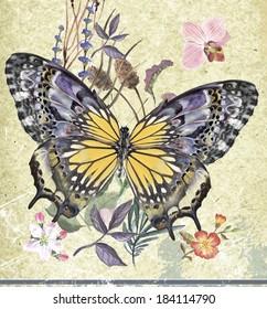 Vintage-Hintergrund mit Farbschmetterling, Blumen und Blatt