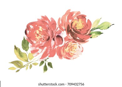 Vintage bouquet of three pink peonies. Watercolor painting. Wedding and birthday drawing. Greeting card. Painted background. Hand drawn illustration. Flower print. Cloth pattern. Roses backdrop.