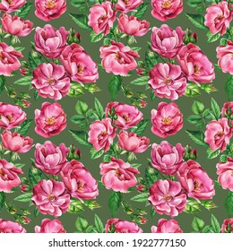 Vintage flowers, branches of roses, buds and leaves. Watercolor flowers. Seamless patterns