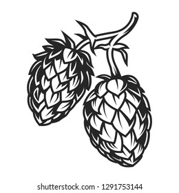 Vintage hop cones concept for brewery in monochrome style isolated  illustration