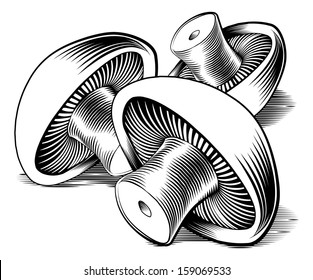 A vintage retro woodcut print or etching style mushrooms illustration