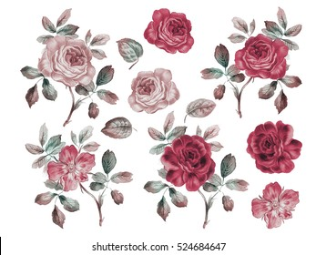 Vintage roses set. Watercolor illustration. Design elements for cards, invitations and textile. Isolated on white.