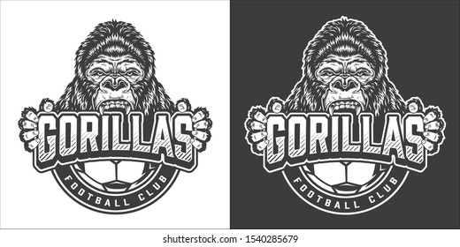 Vintage soccer club monochrome badge with ferocious gorilla head and claws isolated illustration