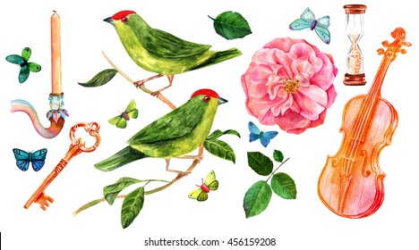 A vintage watercolor set for invitation or greeting card design: isolated butterflies, candle, key, green birds, pink rose, sandglass, violin, and green leaves; hand painted on white background