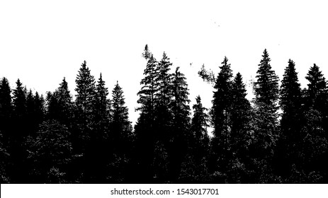 Vintage wild forest design template.