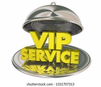VIP Service Exclusive Treatment Dinner Platter Plate Words 3d Illustration