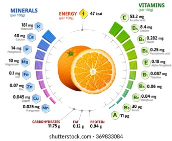 Vitamins and minerals of orange fruit. Infographics about nutrients in orange. Qualitative illustration about orange, vitamins, fruits, health food, nutrients, diet, etc