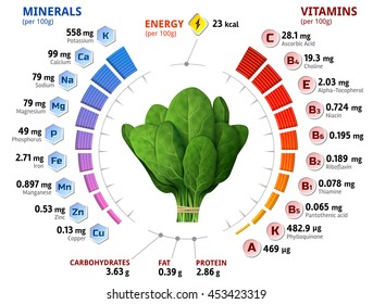 Vitamins and minerals of spinach leaves. Infographics about nutrients in green spinach. Qualitative illustration about spinach, vitamins, vegetables, health food, nutrients, diet, etc