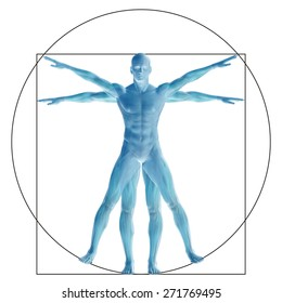 Vitruvian human or man as a concept, metaphor conceptual 3d proportion anatomy body isolated for biology, anatomical, Leonardo, medicine, symbol, physiology, skeleton, health, humanity or morphology