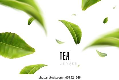 vividly flying green tea leaves, white background 3d illustration