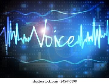 voice verification technology