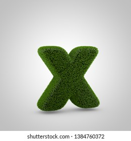 Volumetric green moss lowercase letter X isolated on white background. 3D rendered grass alphabet. Eco font for banner, poster, cover, logo design template element.