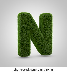 Volumetric green moss uppercase letter N isolated on white background. 3D rendered grass alphabet. Eco font for banner, poster, cover, logo design template element.