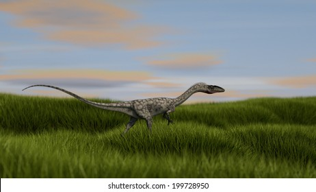 walking coelophysis small dinosaurus