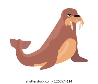 Walrus cartoon character. Cute walrus flat raster isolated on white background. Arctic fauna species. Walrus icon. Animal illustration for zoo ad, nature concept, children book illustrating
