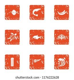 Wander icons set. Grunge set of 9 wander icons for web isolated on white background