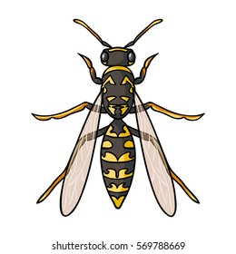 Wasp icon in cartoon style isolated on white background. Insects symbol stock bitmap, rastr illustration.