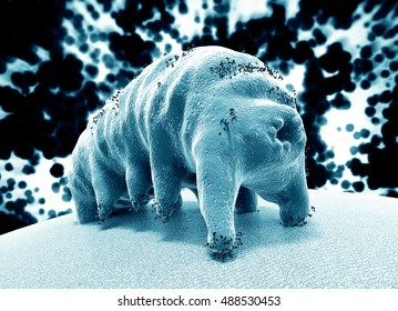 Water bear (tardigrade), the most extreme animal on our planet, 3D rendering