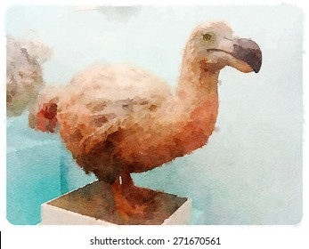 water color illustration dodo bird