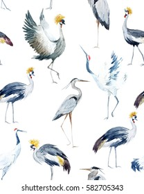 Water color pattern with birds. African Crowned Crane. White Crane.  gray heron. wallpaper with birds