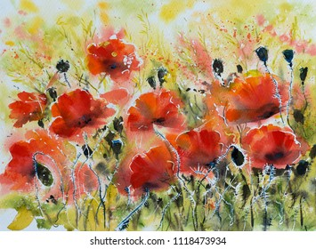 Water color red poppy flowers painting. Flowers in soft color and blur style for background