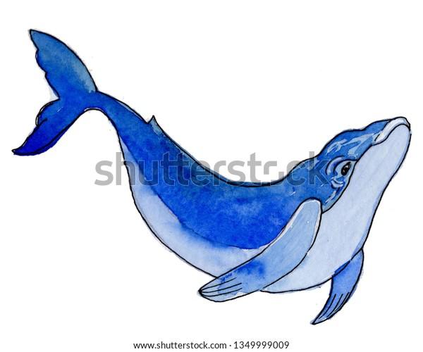 Water Colour Cartoon Sea Blue Whale Stock Illustration 1349999009