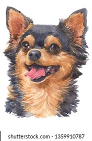 Water colour painting of Chihuahua