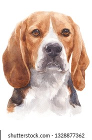 Water colour painting of a naughty dog Named Beagle