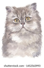 Water colour painting of Persian 005