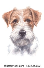 Water colour painting, small dog figure, white brown fur, Jack Russell