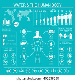 Water and human body infographic on blue background. Useful information about water. Concept of healthy lifestyle. Drink more water. Raster illustration.