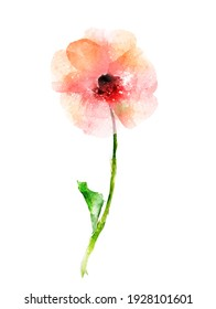 Watercolor abstract flower, isolated on white background