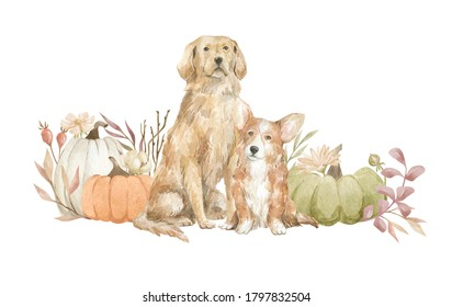 Watercolor adorable dogs and pumpkin with flowers. Autumn rustic scene. Fall aesthetic clipart with golden retriever and welsh corgi