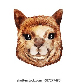 Watercolor alpaca portrait. Hand drawn illustration isolated on white background. Perfect for nursery prints, stickers, greeting cards and other DIY