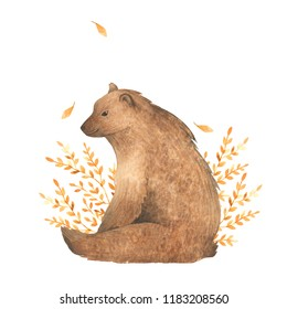 Watercolor animal bear. Hand drawn illustration. Autumn, forest