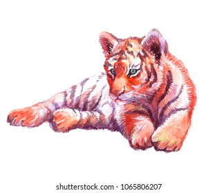 Watercolor animal tiger baby isolated on white background
