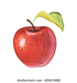 Watercolor apple on white background.