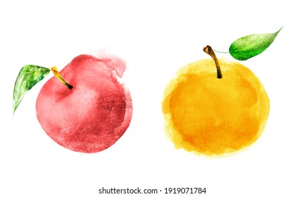 Watercolor apples on white background