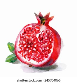 Watercolor artwork with a pomegranate. Hand drawn raster illustration