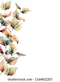Watercolor autumn plant card. Hand painted leaves and branch isolated on white background. Botanical illustration for design, background, card and fabric. Fall print