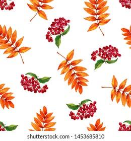 Watercolor autumn print. Berries, orange leaves. White background. Watercolor pattern