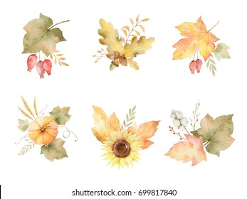 Watercolor autumn set of leaves, branches, flowers and pumpkins isolated on white background. Thanksgiving illustration for your design.