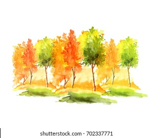 Watercolor autumn trees and bushes. Landscape, forests, parks, gardens, groves. Isolated on white background. Watercolor logo, greeting card, drawing for your design.