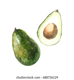 Watercolor avocado elements. Hand drawing isolated illustration on white background for your design